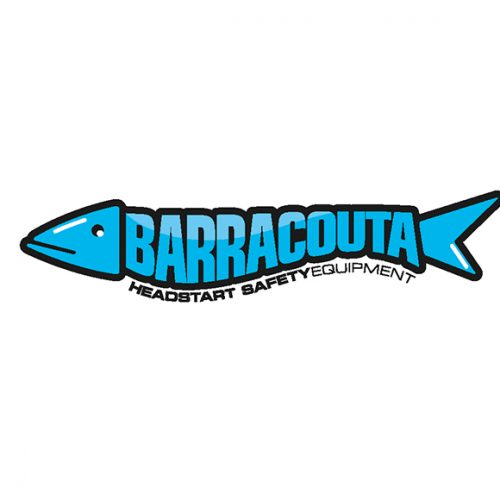 The Creative Parrot Logo Design - Barracutta